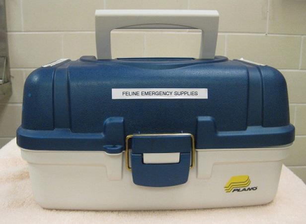 FIGURE 2. A toolbox that serves as a crash cart.