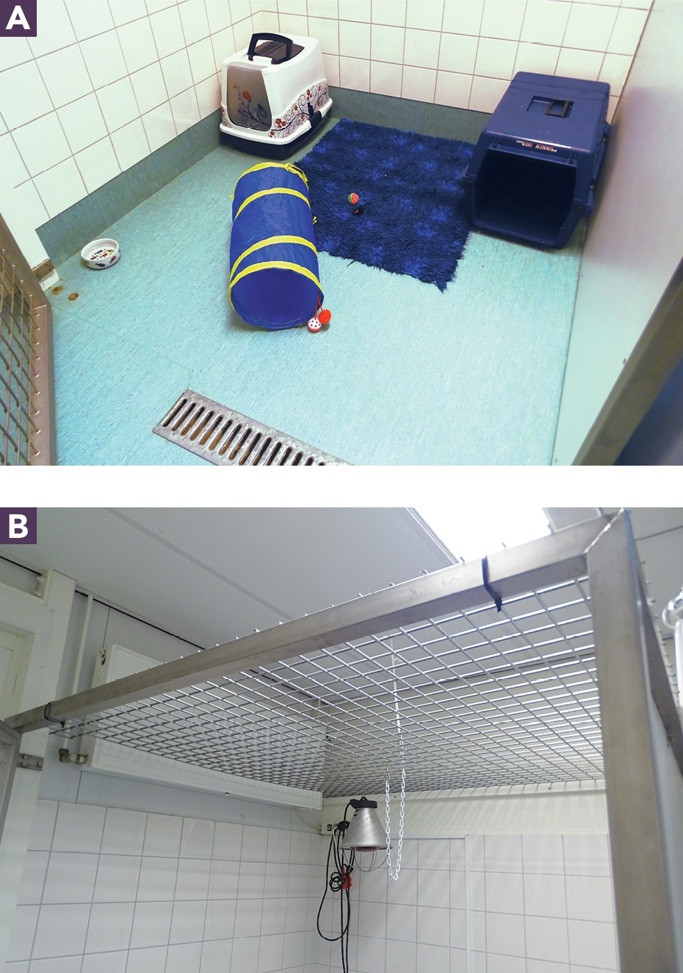 FIGURE 1. (A) A converted isolation cage with hiding places and toys for cats. (B) The mesh roof of the cage.