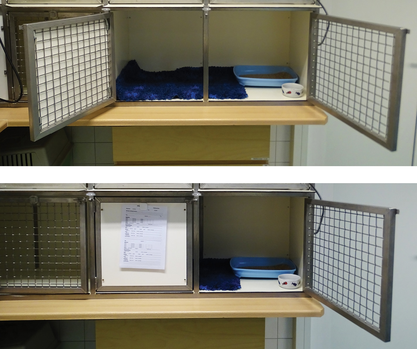 FIGURE 2. Cat cages with double doors. When the doors are closed, cats can hide behind the solid door to feel safe.