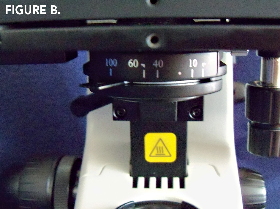 Figure B. Steps for Köhler Illumination