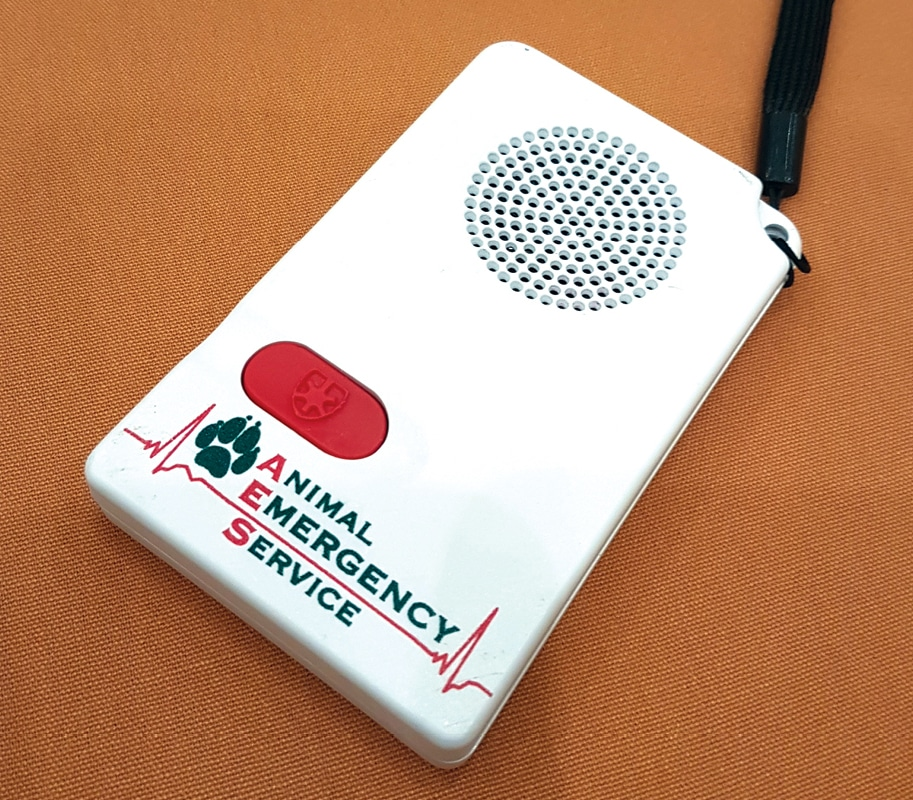 FIGURE 6. An auditory timing aid device for veterinary CPR.
