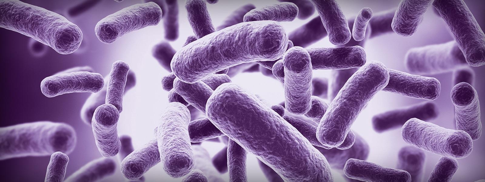 The Gastrointestinal Microbiota: An Introduction