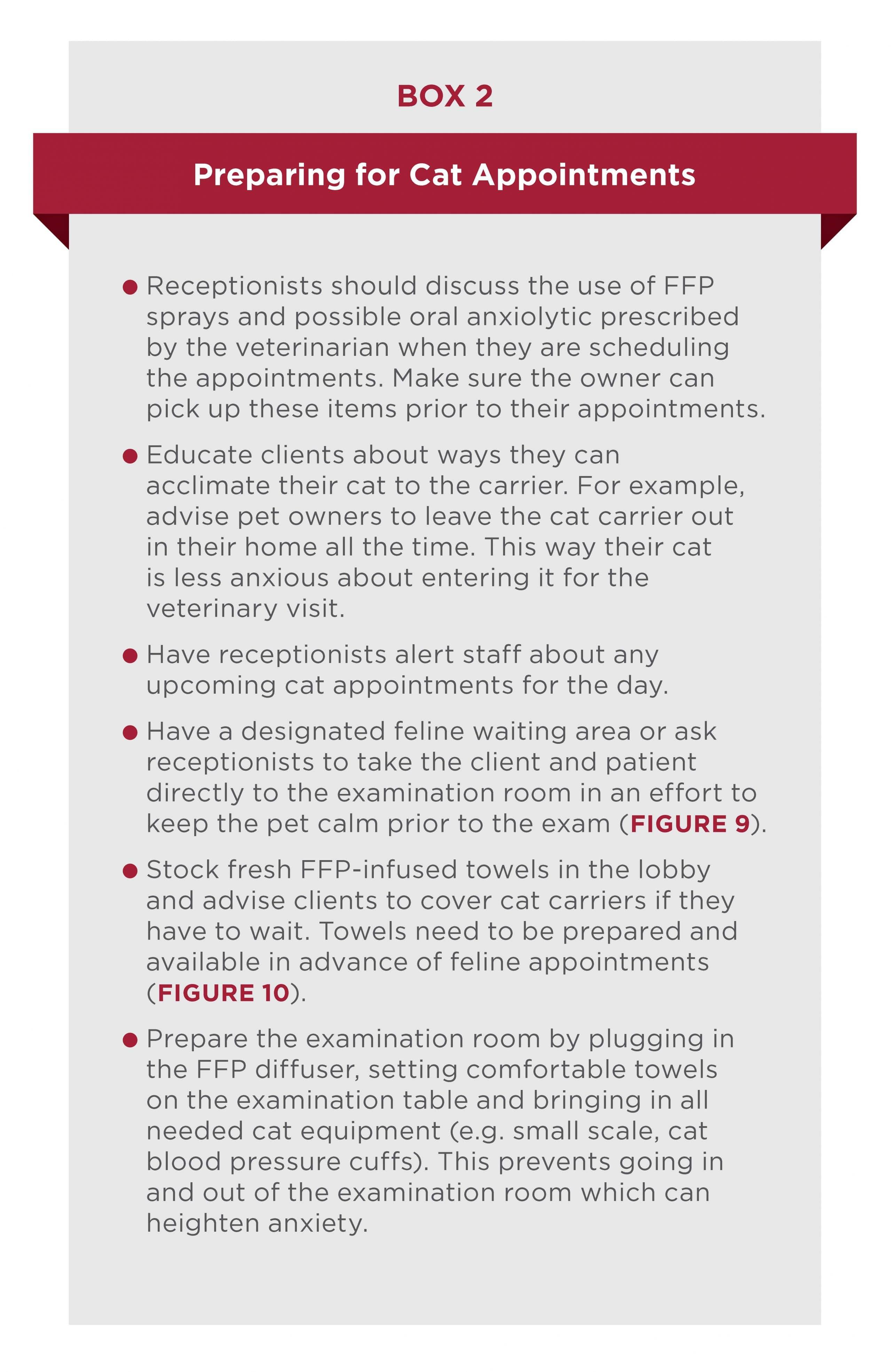 Understanding the Cat   Today's Veterinary Nurse