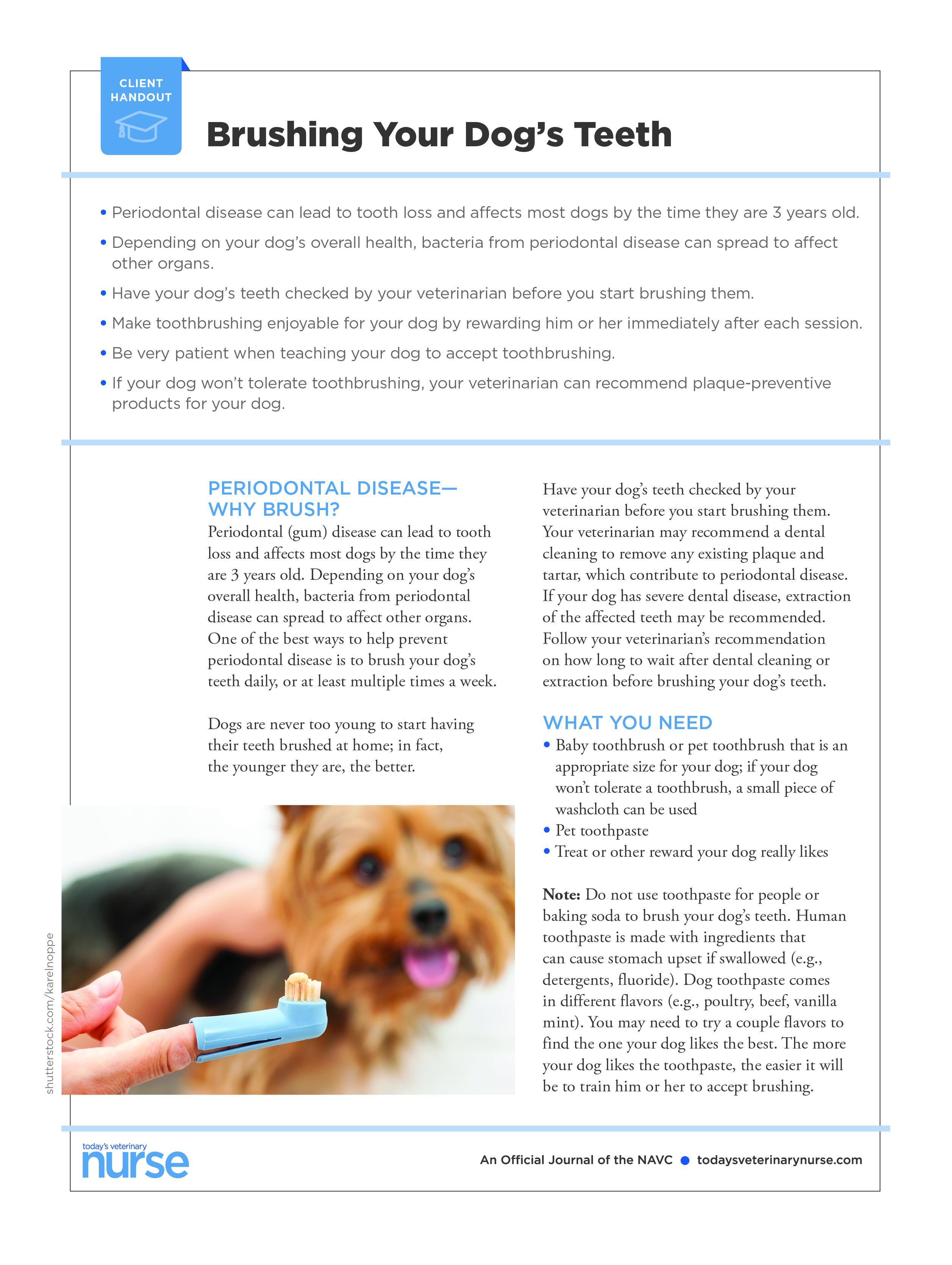 Client Handouts | Today's Veterinary Nurse