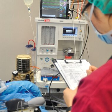 FIGURE 2. Monitoring a geriatric dog during anesthesia.