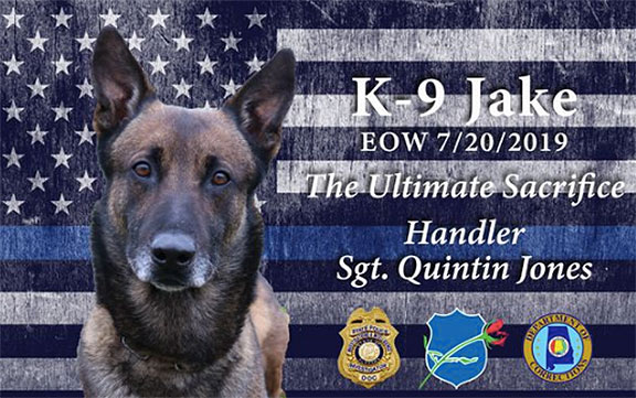 Alabama K9 Dies After Being Exposed to Synthetic Marijuana During Contraband Search