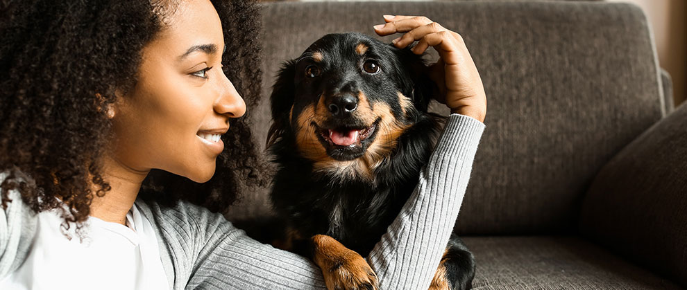 Multicultural Pet Owners Are a Growing Segment