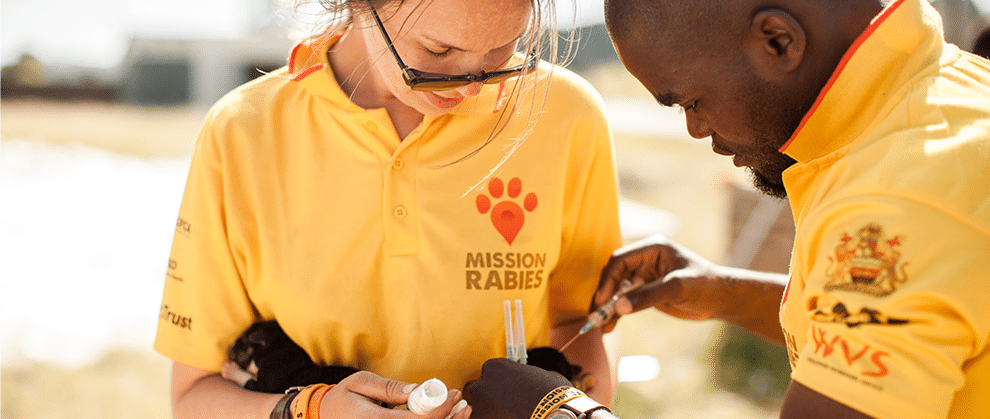 WSAVA and Mission Rabies Join Forces on Rabies Prevention