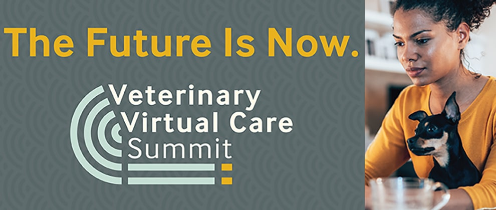 veterinary virtual care summit