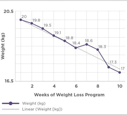 Figure 1. Sample weight loss graph