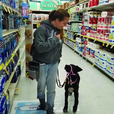 The author training Penny in a grocery store.